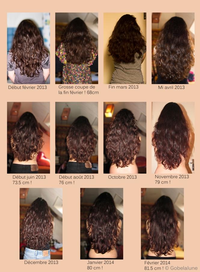 Mes cheveux, de Février 2013 à Février 2014