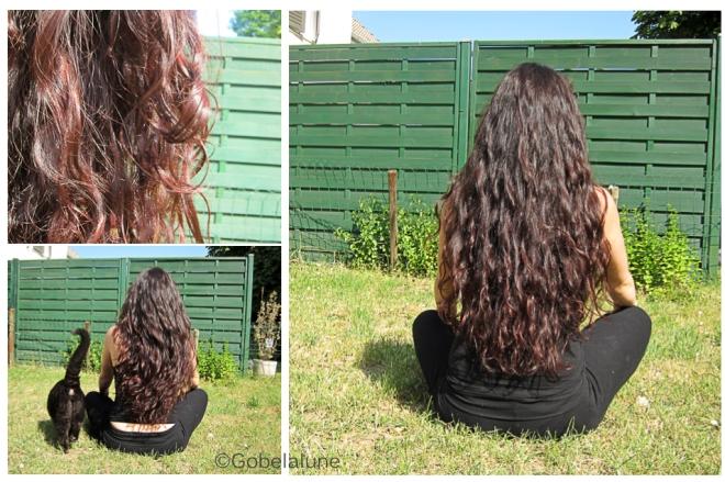 Si le cheveu tombe sans bulbe
