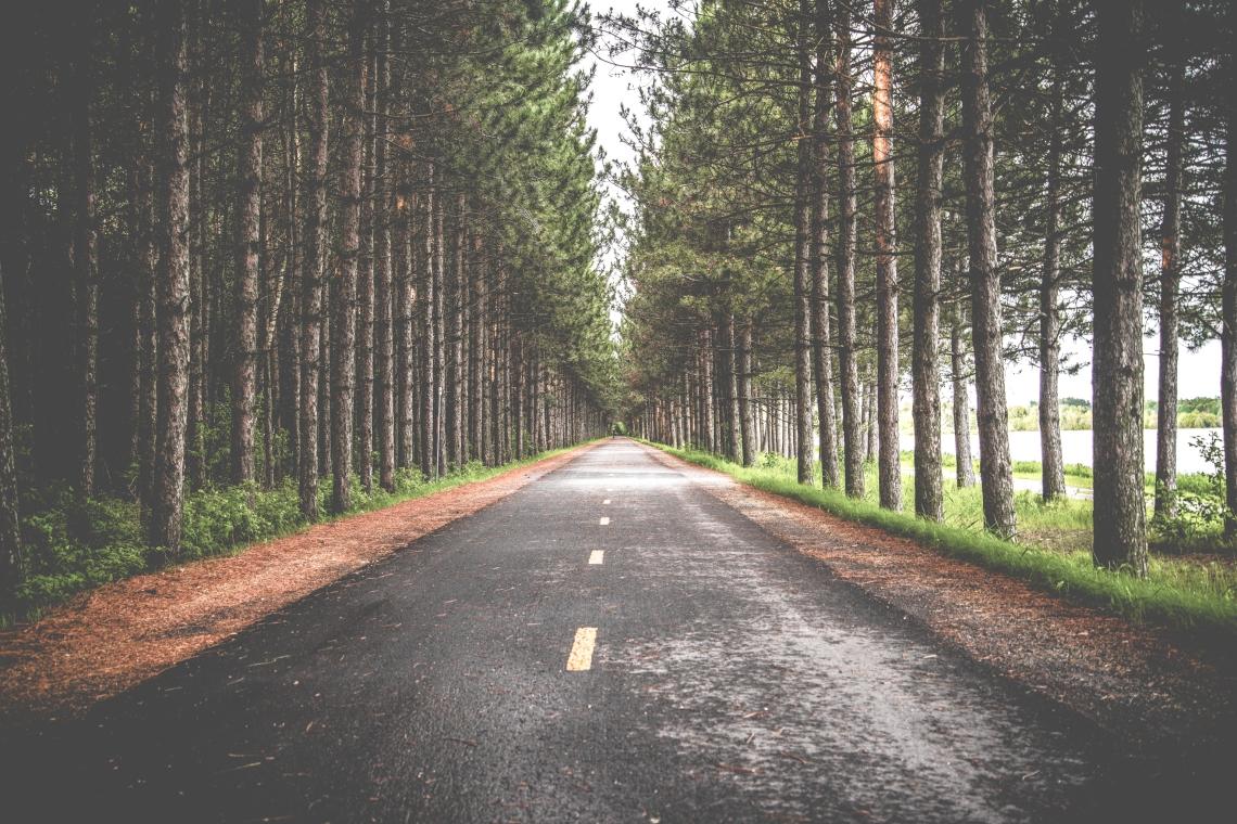 Long is the road peut-être mais aussi very interesting it is ... so, let's go ?